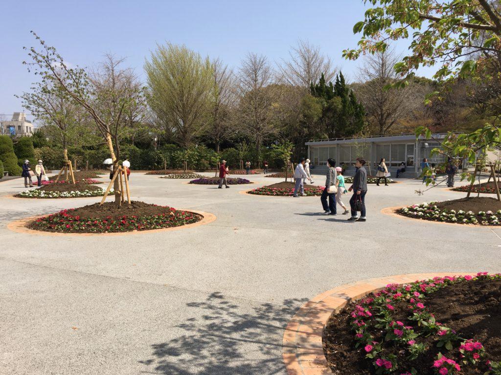 玉縄桜広場