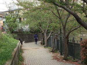 上大岡裏道2