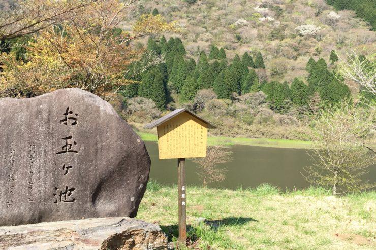 お玉ヶ池1