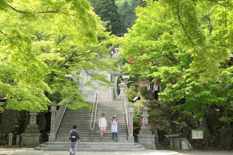 阿夫利神社手前階段