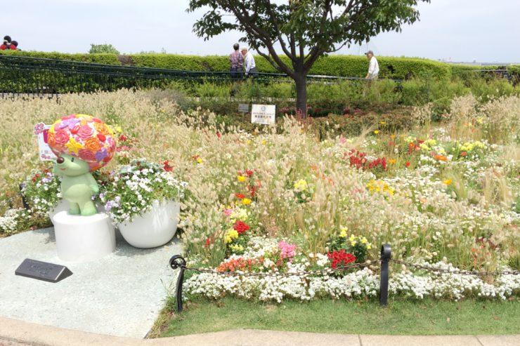 ガーデンベア花壇