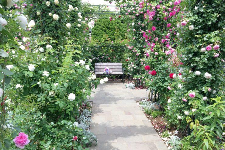 沈床花壇2