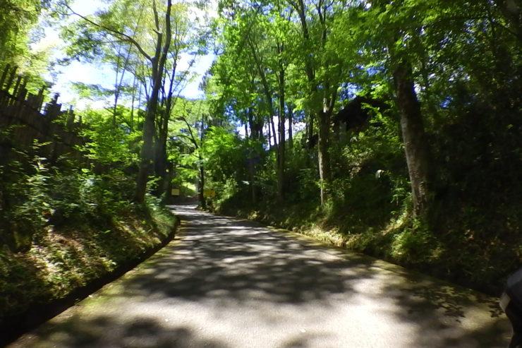 薬師林道入口