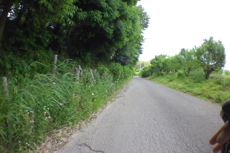 目的地近くの道路
