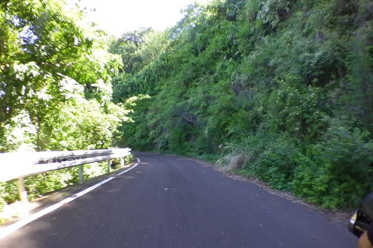 仁ヶ久保林道1