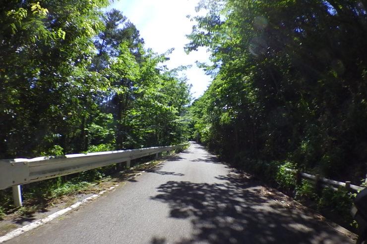 浅間山林道1