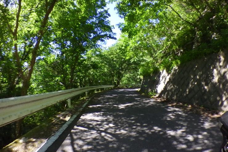 浅間山林道4