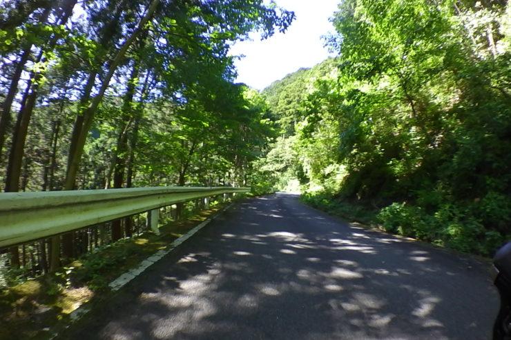 浅間山林道6