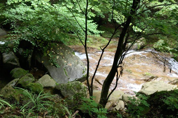 林道からの川