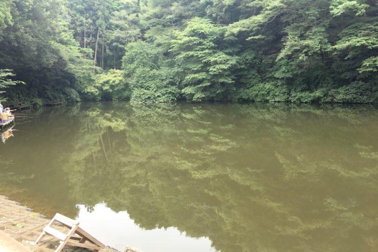磯野池の釣り