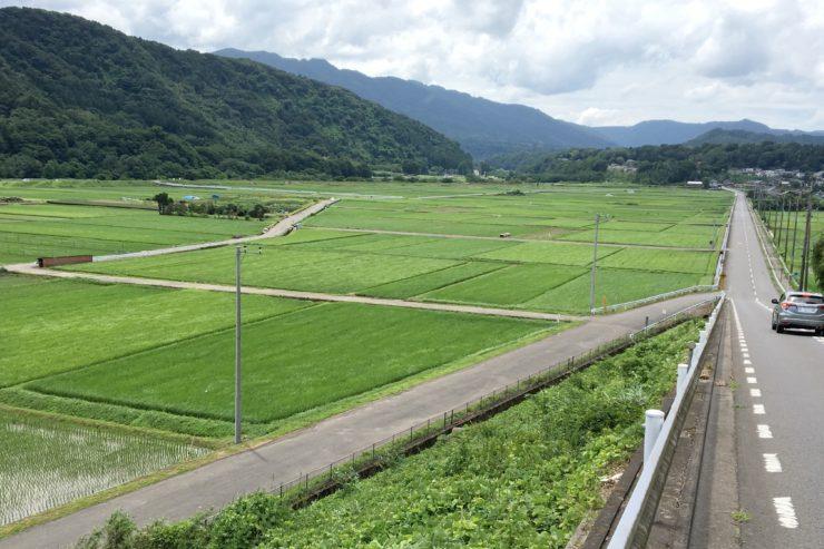 中津川角田の田んぼ