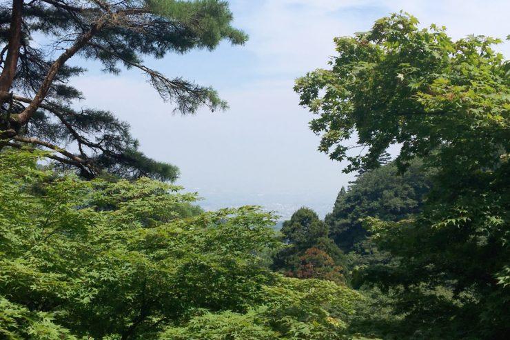 大山寺からの眺望