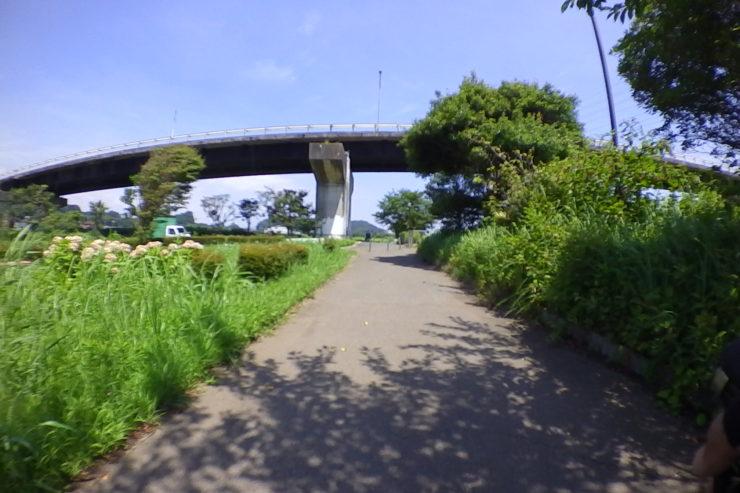 引地川沿い