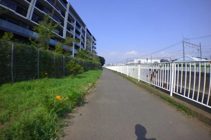 平戸永谷川沿い