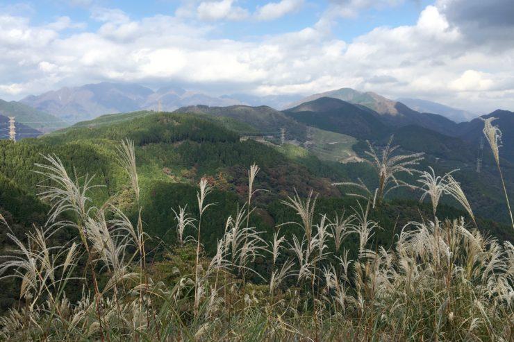 丹沢の山々