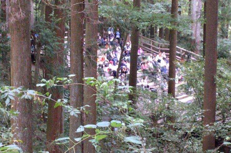 森のステージ