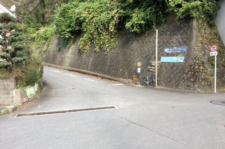 大野山入口2