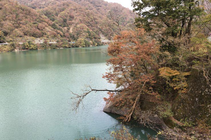 湖周りの紅葉
