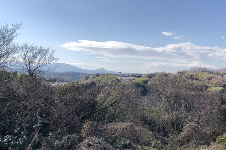 見晴らしの丘の景色