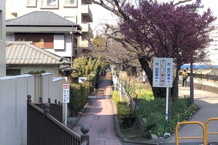 柏尾川戸塚近く