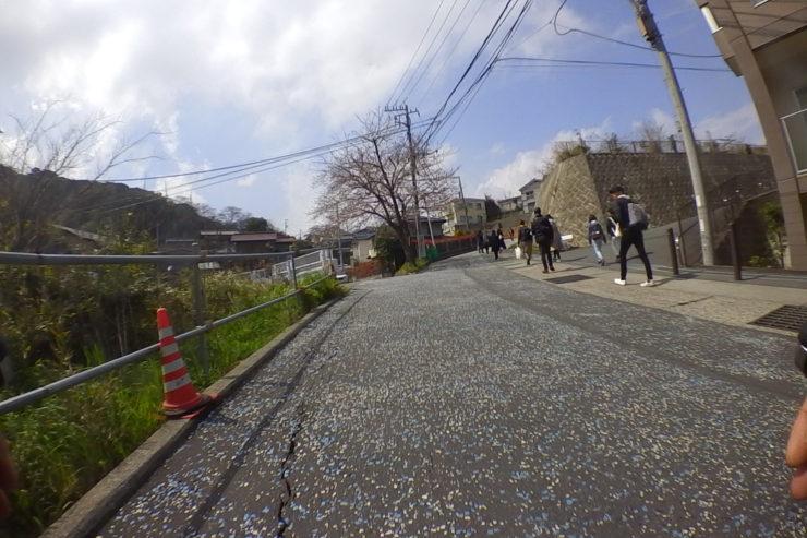 衣笠山公園への坂