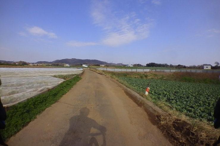 路面の悪い農道