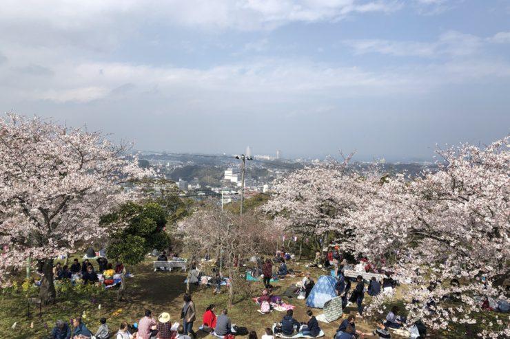 衣笠山公園展望台