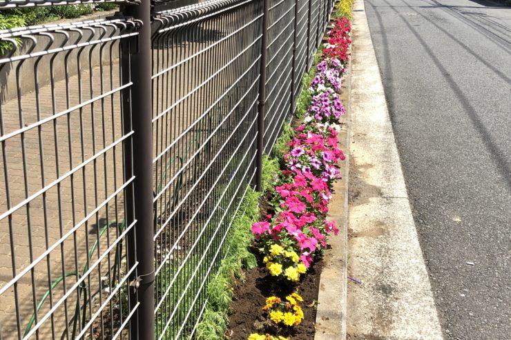 中屋敷中央公園の花壇