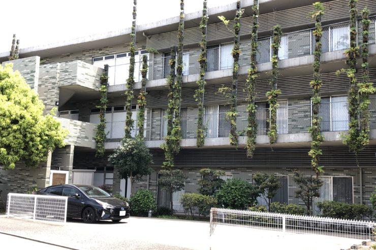 植物がはっているマンション