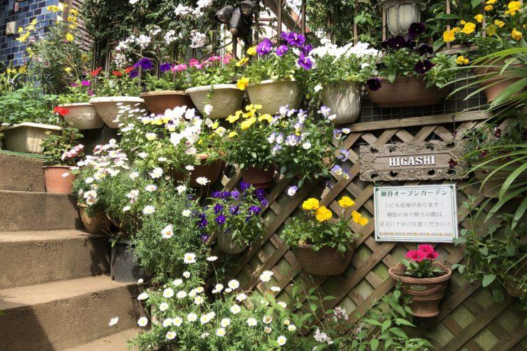 東さんのお庭