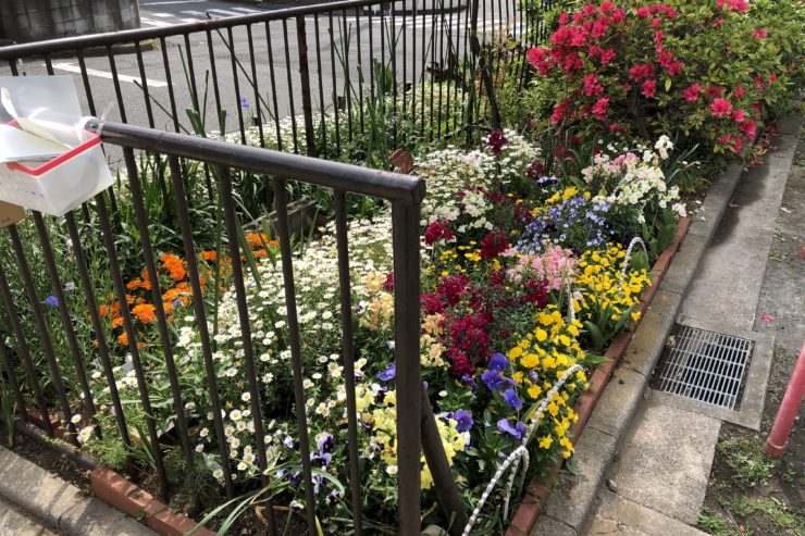三ツ境第六公園の花壇
