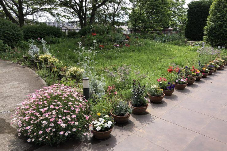 カーサプラチナ三ツ境の花壇