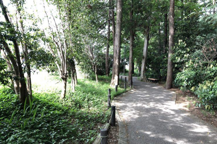 長屋門公園の森林