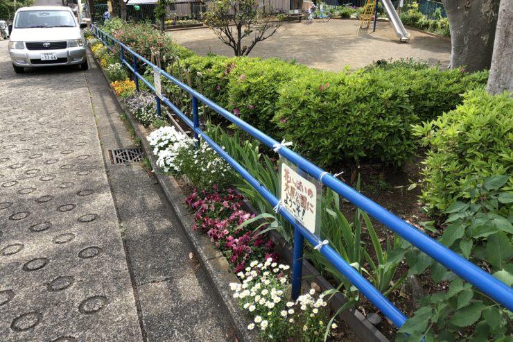 阿久和大原公園の花壇