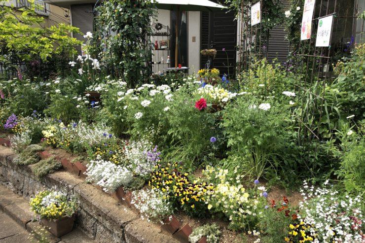 兵藤さんのお庭