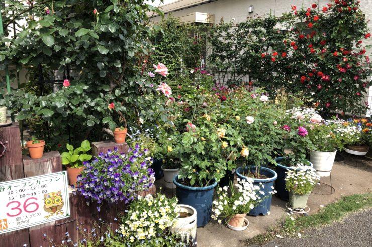 吉田さんのお庭