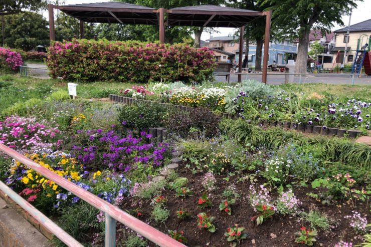 下瀬谷第二公園の花壇