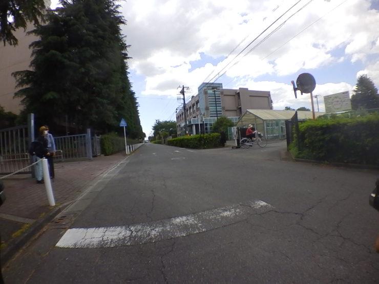 日本大学生物資源科学部付属バラ園