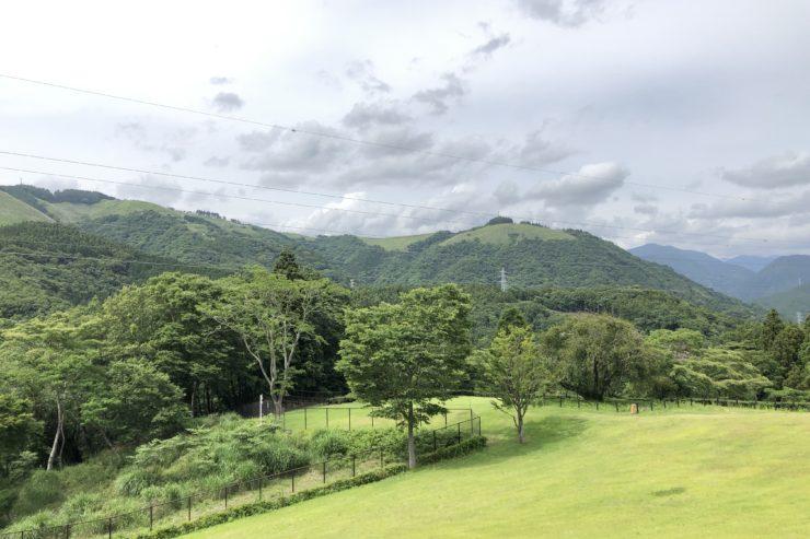 山北つぶらの公園からの景色
