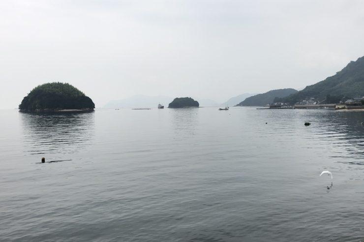 向島の海岸