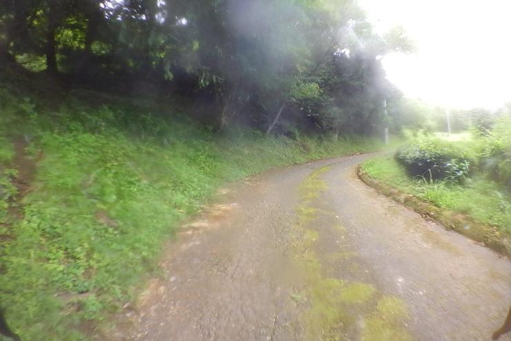 走行した林道