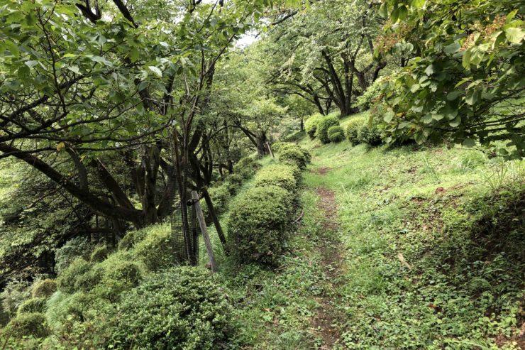 最明寺史跡公園展望台へ