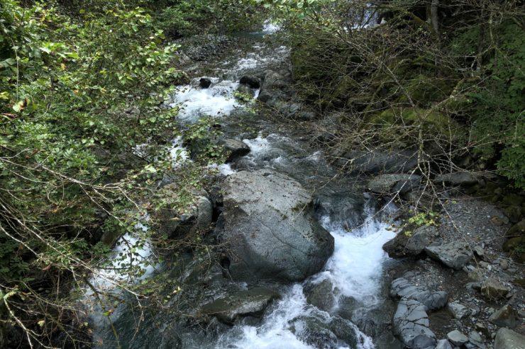 塩水橋からの川の流れ