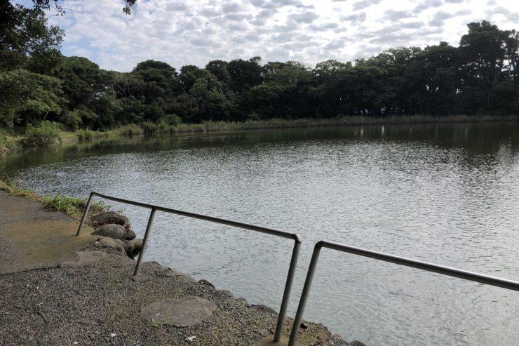 大瀬崎神池