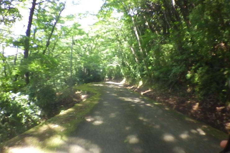 最明寺史跡公園からの下り