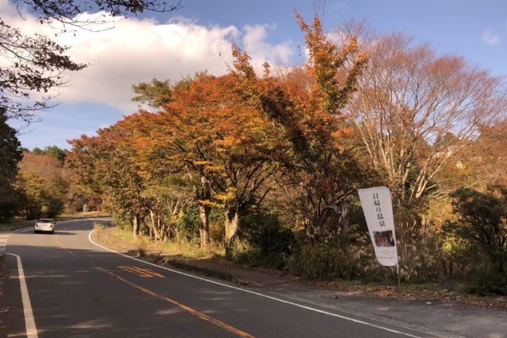 箱根ビジターセンター近く