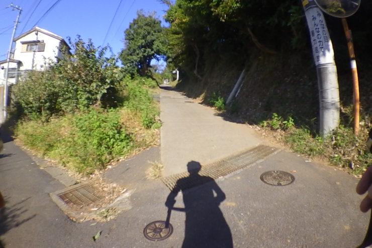 裏道の分かれ道