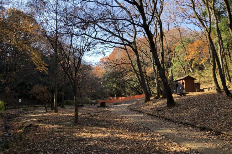 小山田緑地