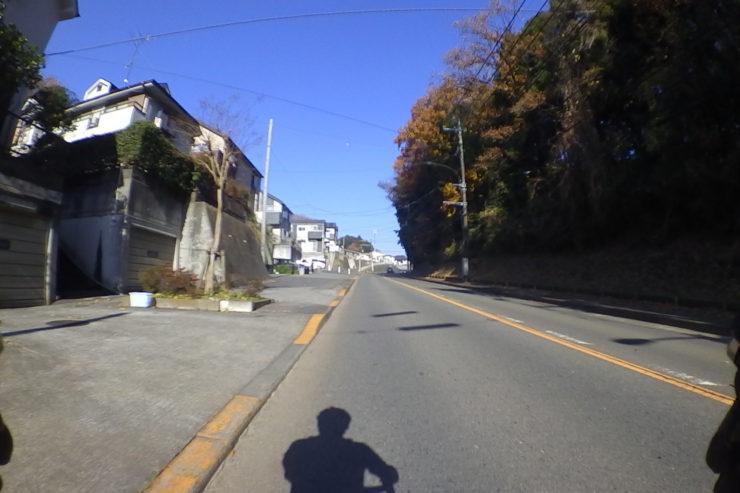 町田市の緑地