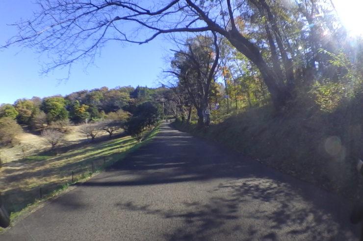 弘法山への道